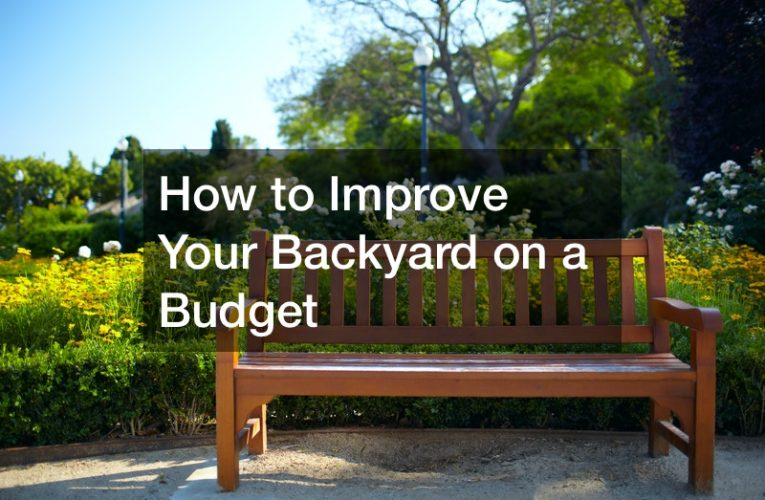 How to Improve Your Backyard on a Budget